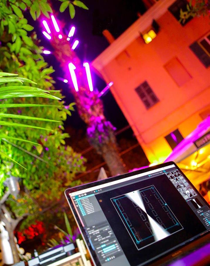 palm_tree_02